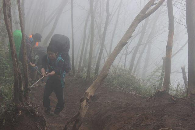 foto jalur pendakian merbabu via suwanting