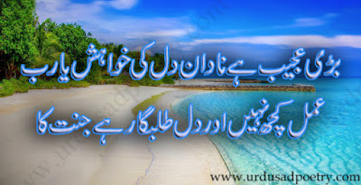 Bari Ajeeb Hai Nadan Dil Ki Khwaish Yarab