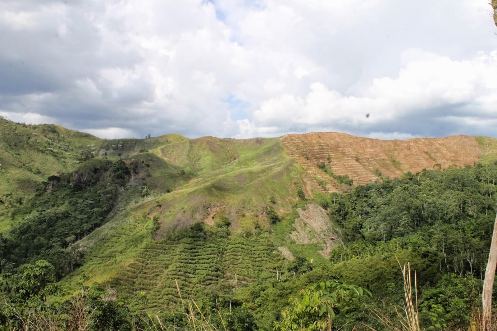 Bukit Teletabis