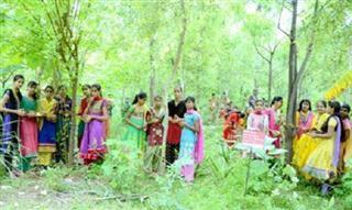 কন্যাসন্তান জন্ম দিলেই লাগাতে হয় ! Tree Plantation for Daughter