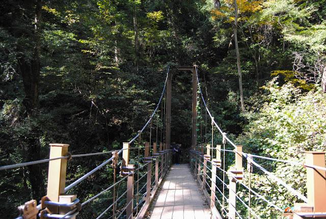 Takaosan, monte takao, escursioni da tokyo, visitare monte takao, cablecar monte takao, momiji, giappone autunno, koyo