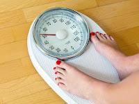 Turun Berat Badan dengan Makanan Berlemak