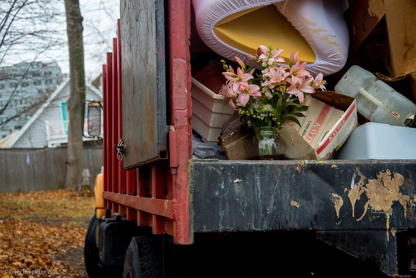 Portland, Maine USA November 2016 photo by Corey Templeton of flowers in back of old dump truck on Munjoy Hill.