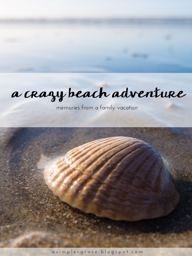 Memories from a family vacation - A Crazy Beach Adventure | Blog-tember Day 15 #blogtemberchallenge