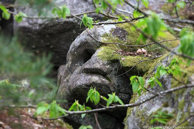 Forêt de Fontainebleau, Trois Pignons, Rocher de la Ségognole
