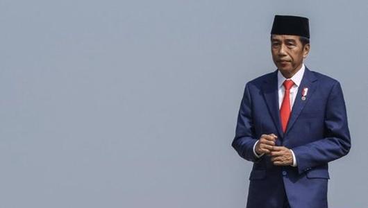 Jokowi: Yang Dipakai Konsultan Asing, Enggak Mikir buat Rakyat Takut Atau Tidak