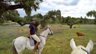 Diogo Lima Mayer, Riitta Reissaa, Monte Velho, Horsexplore, Portugal, Alentejo