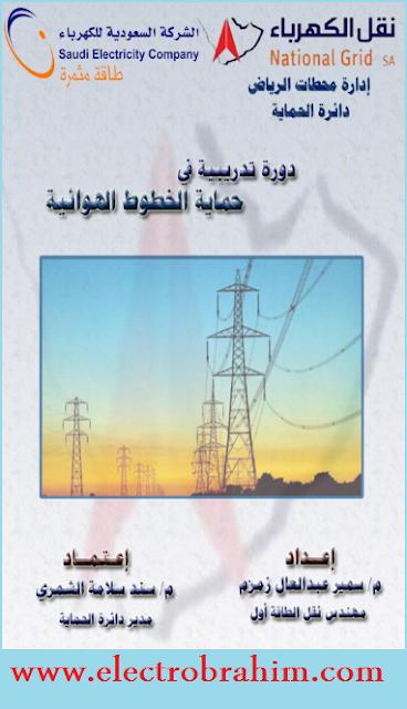 دورة تدريبية في حماية خطوط الكهرباء الهوائية