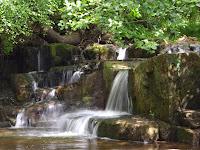 Northumberland Landscapes