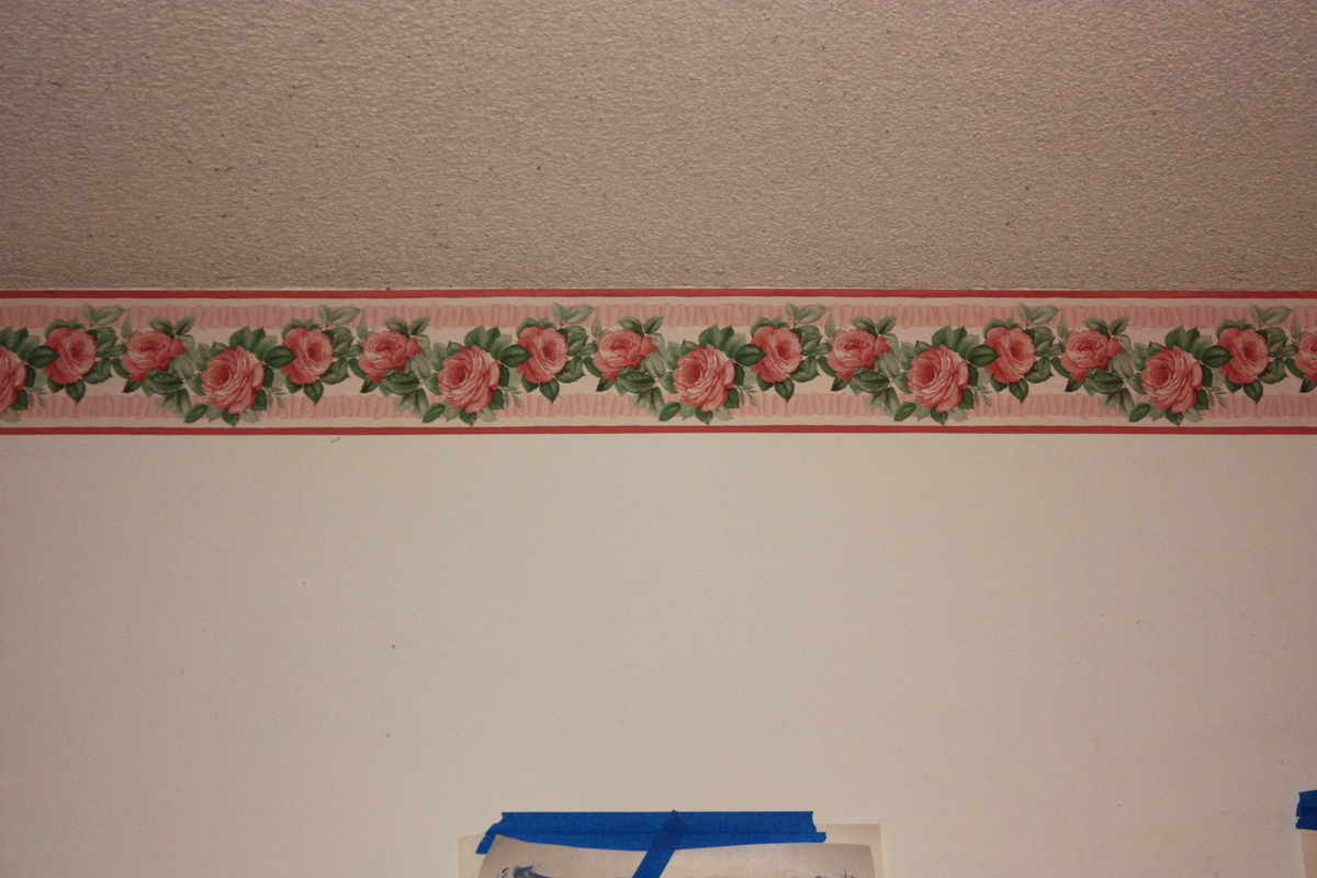 Extreme Makeover - Flowers Edition: Living Room Ceiling and Paint