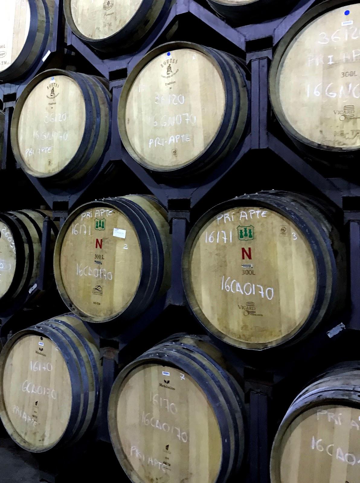Stitch & Bear - Torres Priorat - Aging in oak barrels
