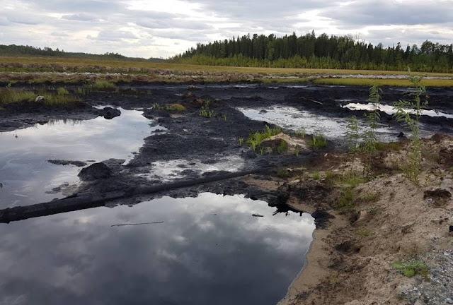 На Петелинском нефтяном месторождении в 15 километрах от поселка Сентябрьский в Нефтеюганском районе ХМАО обнаружен разлив нефти.
