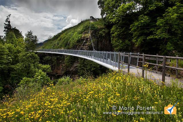 Ponte sul sentiero Nara Negrentino