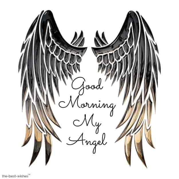 good morning with angel wings pictures