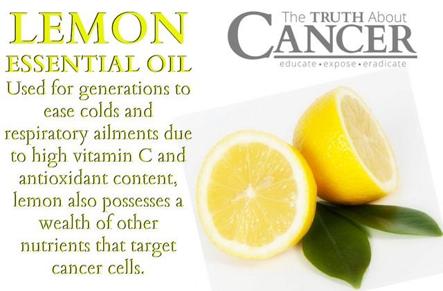 Lemon Untuk Kanker, Apakah Dapat Menyembuhkan?