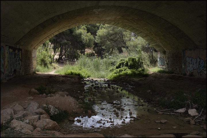 agua,rio,seco,alicante,naturaleza,fotografia