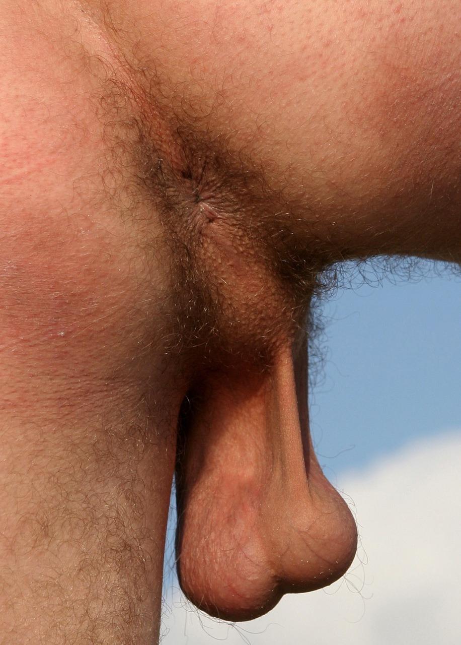 Male balls porn