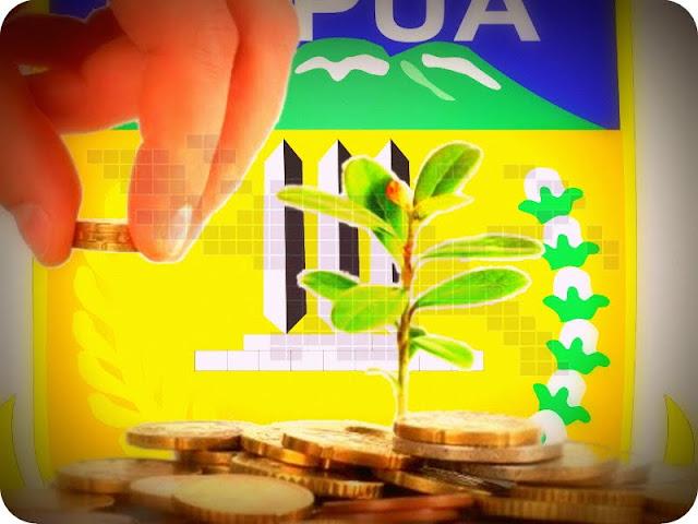 Realisasi Investasi Penanaman Modal di Papua Naik 18 Persen
