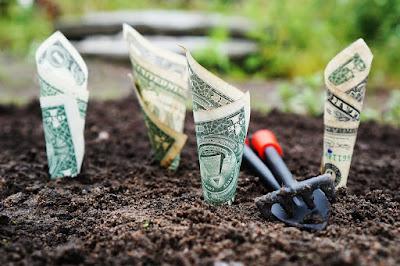 PEA le meilleur moyen de faire fructifier votre épargne