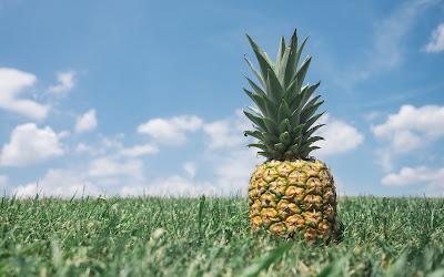pineapple in grass widescreen resolution hd wallpaper