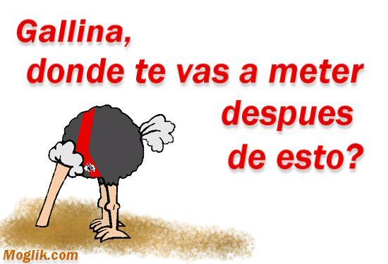 Gallina Muerta Dibujo Animado Fondo De Pantalla Rosa