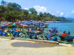 Salah satu wilayah yang mempunyai sumber daya perikanan yang besar di Jawa Timur ialah per Kabar Terbaru- KONDISI UMUM PERIKANAN SENDANG BIRU, MALANG
