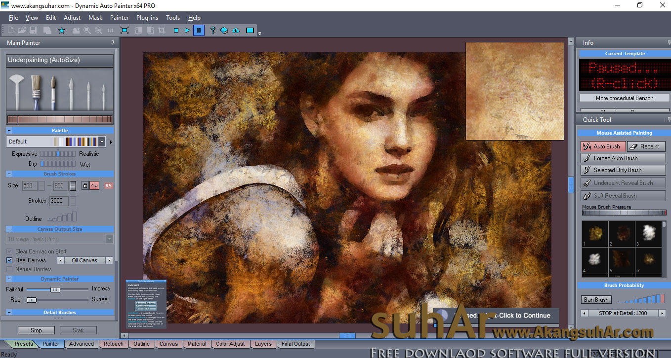 Download MediaChance Dynamic Auto Painter Pro full serial key
