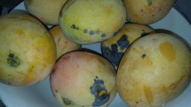 Mangos Banilejos