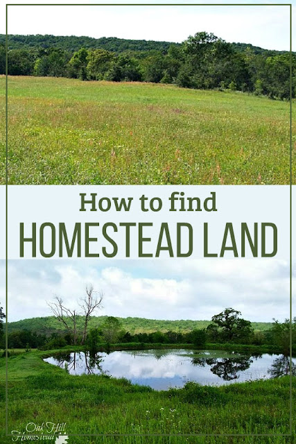 Tips on how to find homestead land.