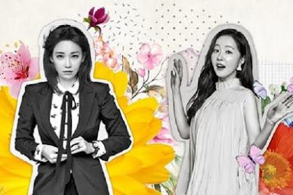 Drama Korea Spring Turns to Spring Episode 1 - 14 Subtitle Indonesia