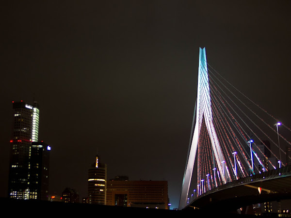 Travel #5 | Rotterdam #5 By night
