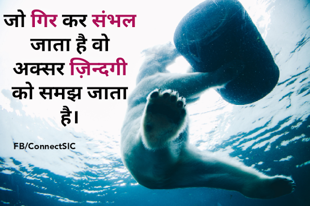 Anonymous Hindi Quotes on Lesson, Life, Falling, Polar Bear in Water,