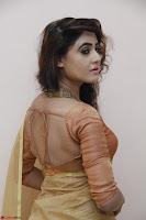 Sony Charistha in Lovely Brown Saree and Choli Spicy Pics ~  Exclusive 19.JPG