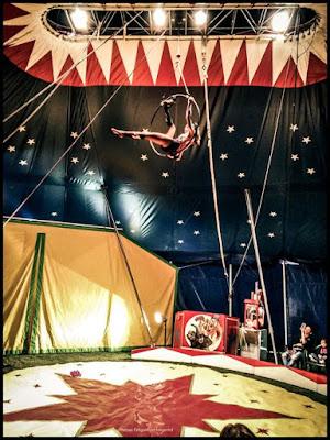 cirque blog famille