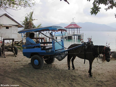 Gili Air, Indonesia horse cart