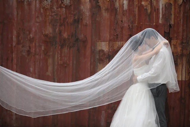 veil over groom