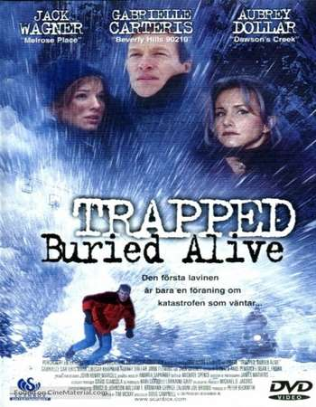 Poster Of Trapped Buried Alive 2002 Dual Audio 300MB DVDRip 480p Free Download Watch Online