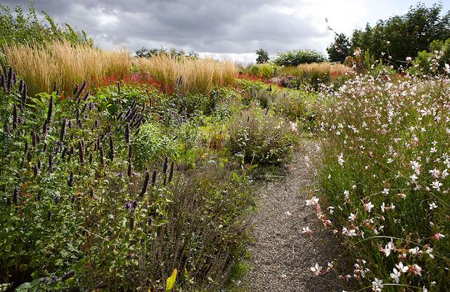 gradina flori perene, ierburi decorative - Piet Oudolf