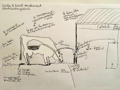 Tiervokabular, gezeichnete Kuh und Stall