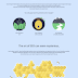 The Evolution of Search Engine Optimization - #infographic