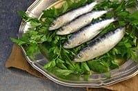 Le sardine contengono omega 3 benefici per la pelle