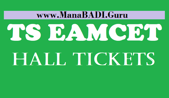 TS Hall Tickets, TS EAMCET Hall Tickets, Telangana EAMCET hall tickets, www.eamcet.tsche.ac.in, TS EAMCET, Hall Ticketes, Telangana State Council of Higher Education, TSCHE