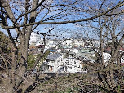 枚方田中邸のムクノキのある高台から見える京阪電車枚方市駅周辺の街並