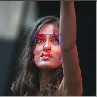 Face alignment using OpenCV