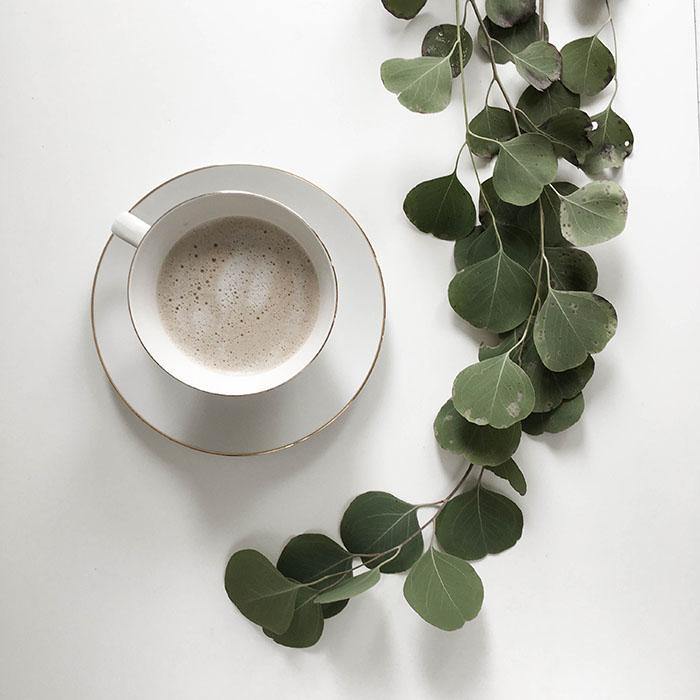 Aamukahvi, eukalyptus, Annan tirpat, joulukuu