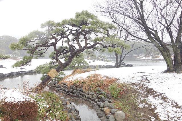 Hama-rikyu Garden en Tokio (Japón)