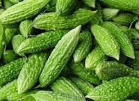 buah pare Obat Herbal Tradisional Penurun Asam Urat