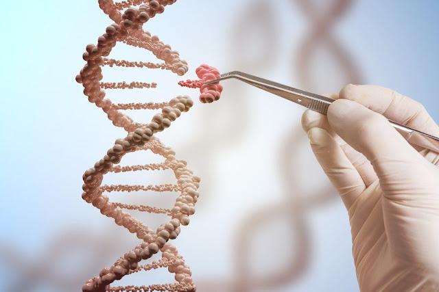 """جديد الـ""""رجيم"""": خسارة الوزن من خلال فحص الحمض النووي"""