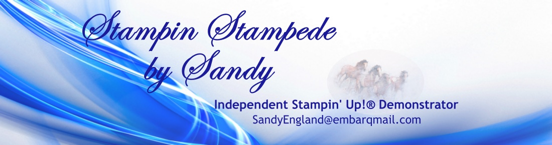 Stampin Stampede by Sandy