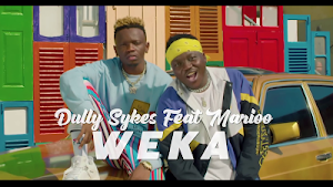 Download Video | Dully Sykes ft Marioo - Weka